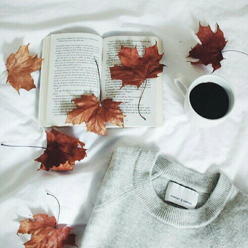 Images inspirations Automne & Cosy
