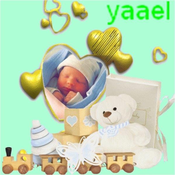 yaael