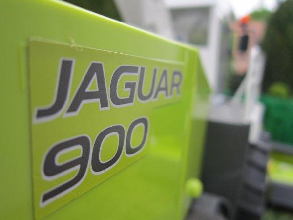 Cet après-midi,la jaguar été de sortie !!