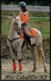 Photo de Mis-CaballOs-X3