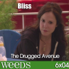 WEEDS - 6x04 - Bliss