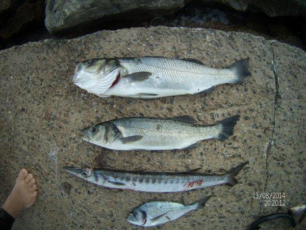 Pêche finale
