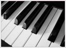 Photo de Piano-Is-Alive