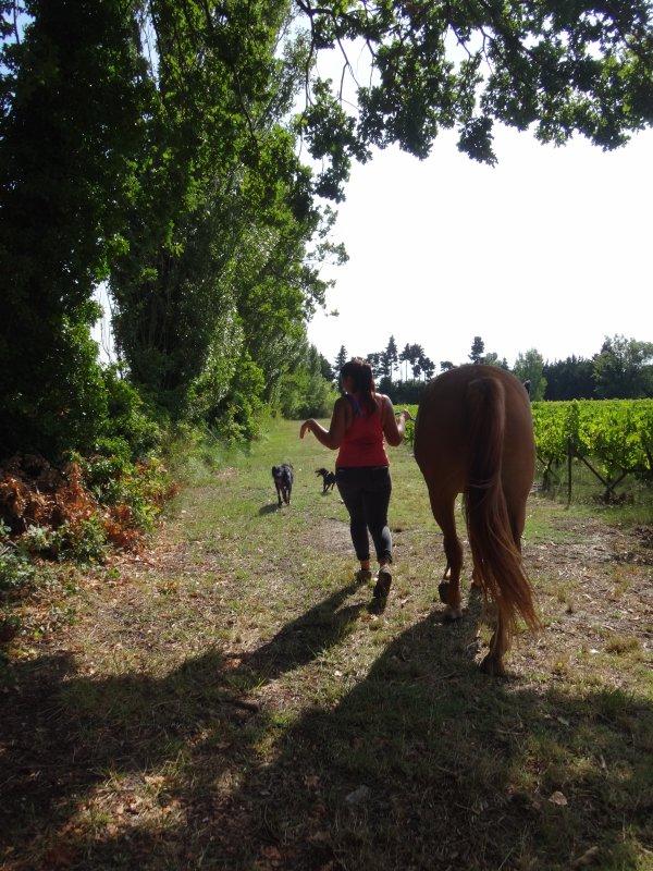 Jolie petite ballade pour... humains, chevaux, chiens, du coup tous le monde est heureux ♥