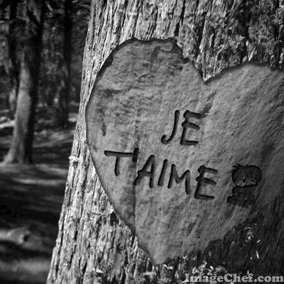 Blog de tite-rose-du-976
