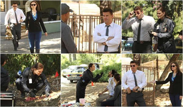 "• •  Bones - 8x04 ""The Tiger in the Tale"" Photos Promotionnelles  • •"