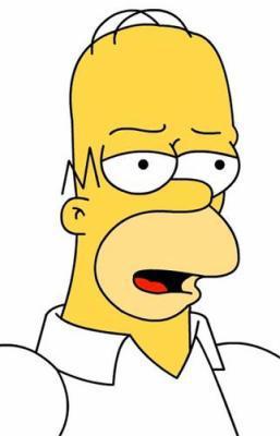 Homer Simpson The World Of Simpson
