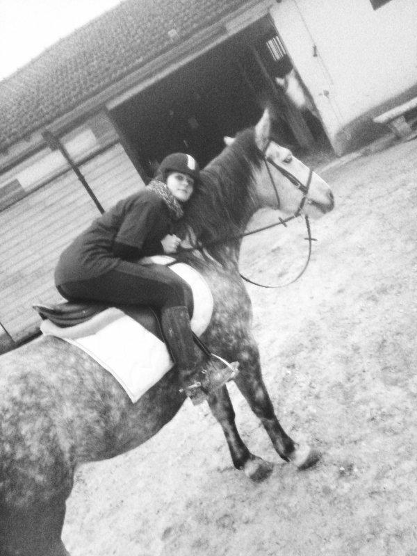 ********* parce qu'à dos de cheval, on voit le monde différemment ! **********