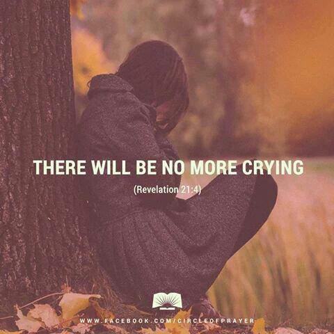Plus de larmes ni de deuils ♡