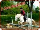 Photo de X-Coco-Chanel-VIP