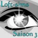 Photo de Loft-sims-s3