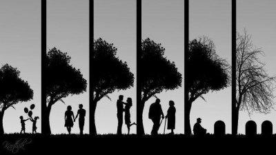 c'est le cycle de la vie