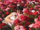 Photo de cricri-rose