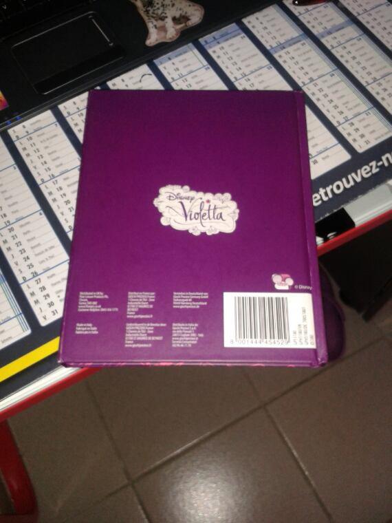 Mon journal intime de violetta.