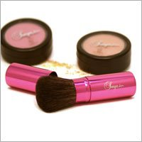 Pink Retractable Brush