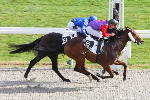 CHANTILLY et PONTCHATEAU le 24/04/2016
