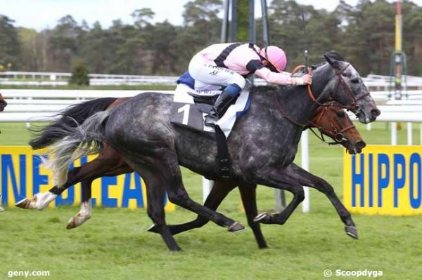 SAINT-CLOUD et ALENCON le 01/05/2016