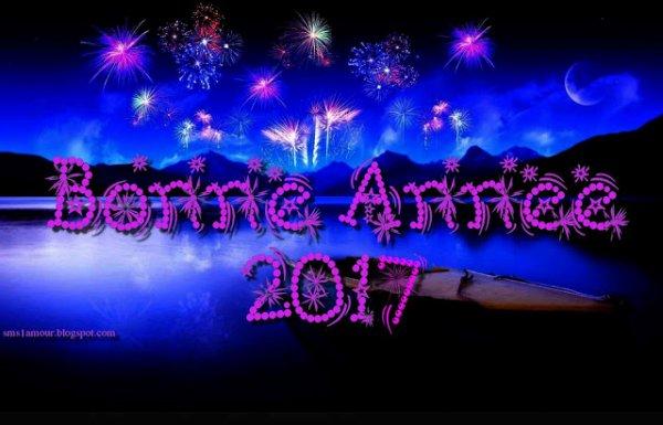 Meilleurs voeux a tous pour l'année 2017 ! VINCENNES le 01/01/2017