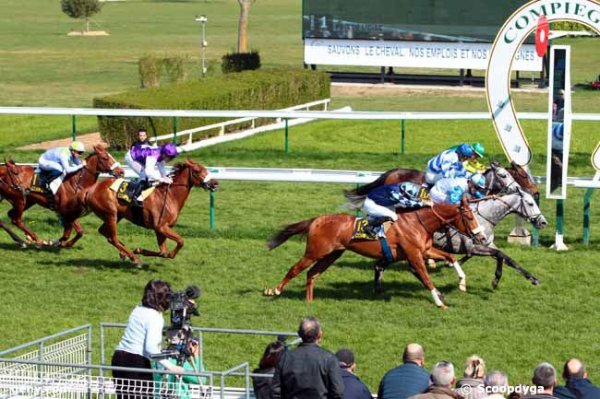 SAINT-CLOUD le 02/04/2017