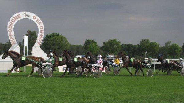 NIORT (Cinquième Etape du Trophée Vert) et RAMBOUILLET (piste en herbe aussi) le 21/05/2017