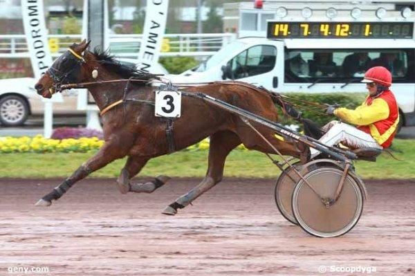 705 Eudes de l'Aunay ( Laurent-Michel David ! pas ridicule dernièrement a Alençon !) 3éme a 53/1 ! on se marre !