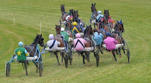 411 Vulcania de Godrel* (ce sera ma favorite !) gagne le Q+ du jour a 17/1 ! 402 Trésor du Fan* ( Jérôme Dubreil ! mon outsider !) 4éme a 44/1 on rigole ce qu'ils veulent faire payer leurs pronos pour des chevaux a a 1,20¤ a la place !