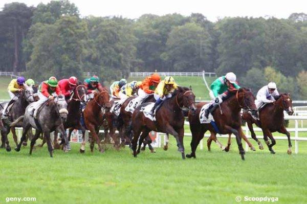 Mes 3 chevaux font l'arrivée du Q+ du jour ! 316 Lady Sidney* (ma favorite !)   307 Agua de Valencia* (mon outsider !)   314 In The Lope* (mon tocard !)