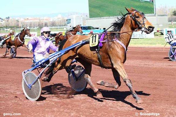 On passe a la caisse a VICHY : 709 Etoile Marjacq ( Jérôme Dubreil !) 3éme a 50/1 - 705 Eclipse Jiel gagne a 7,5/1 !