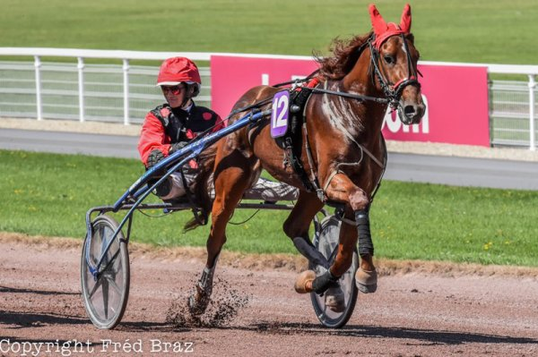 508 Bravo Well gagne facilement a LAVAL ! 12/1 !
