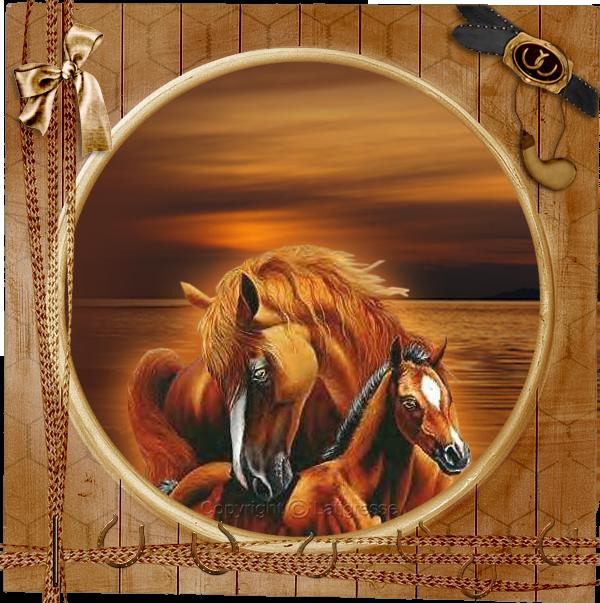 indienne et cadre chevaux