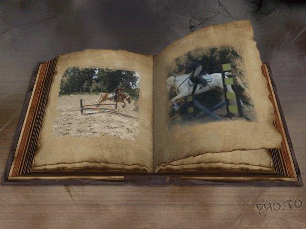 Chapitre 4 : un autre poney, une autre vie!