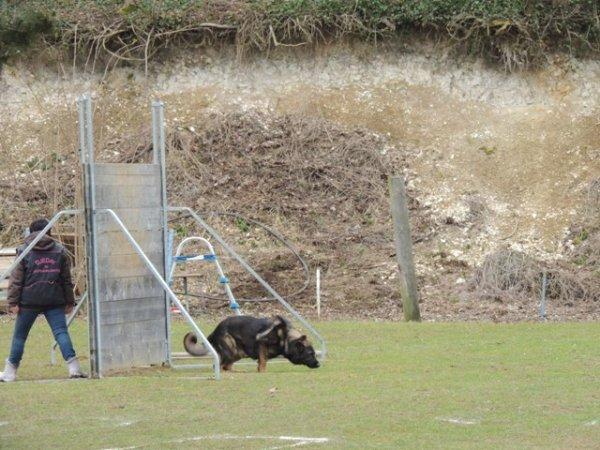 club canin rouvroy 02