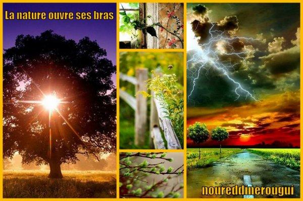 la nature ouvre ses bras
