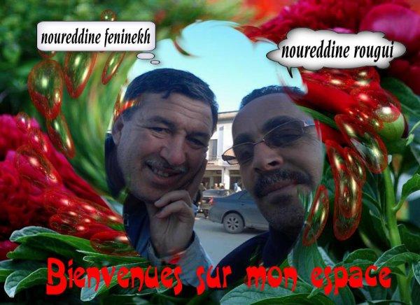 soyez les bienvenus sur le blog renilive/noureddinerougui