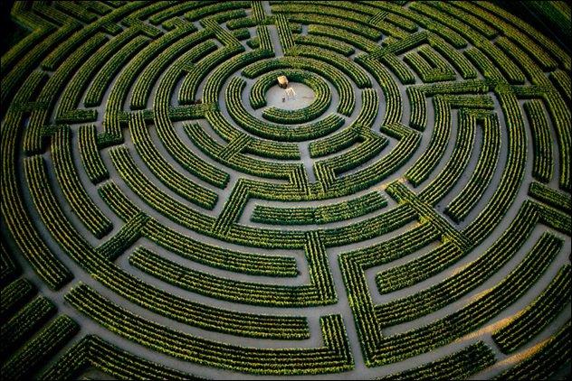 ~Le Labyrinthe~