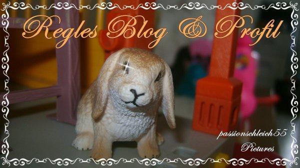 Regles Blog & Profil