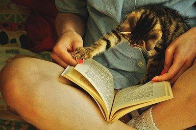 Ma pal à lire
