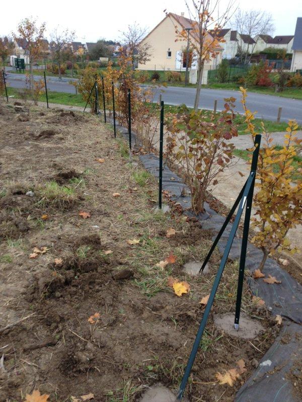Les piquet du grillage notre maison extraco for Piquet decoratif jardin