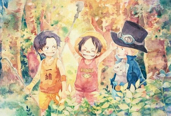 Fanfiction : One piece : Neko's A.S.L.