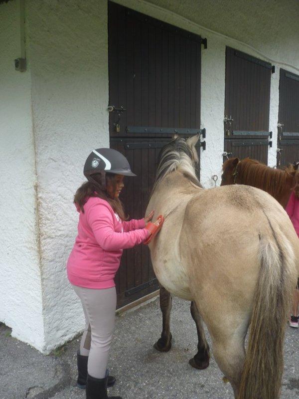 Lundi 10 juillet  début stage d'équitation poney pour ambre  avec  DARIUS