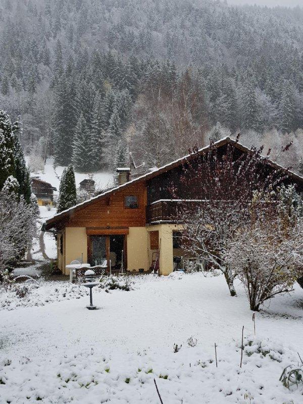 La neige est tombée le 12 novembre au soir!et pourtant derniers géraniums bien à l'abri encore.