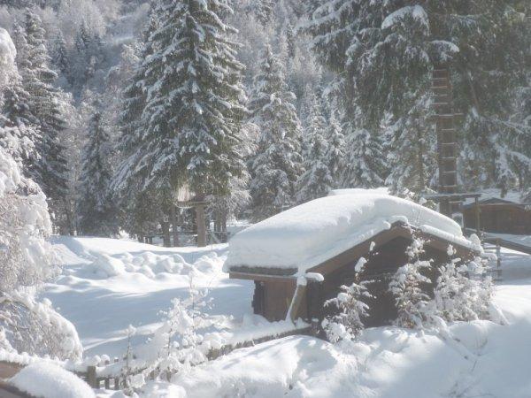 vendredi 2 février...paysage de neige à la Gorge:magnifique