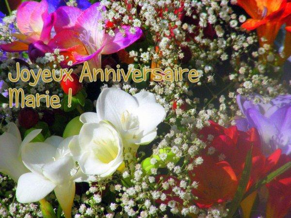 13 février  anniversaire de marie-gabrielle.mardi Gras aussi = nos montagnes enneigées au retour