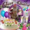 joyeux anniversaire avec ma cannelle pour mes 33 ans