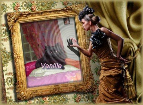 Vanille (poésie)