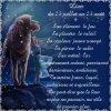 Mon SiGnE Astrologique = LION <3