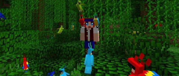 Nouveautés Minecraft