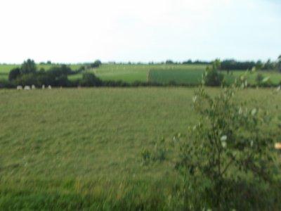 La pension chevaux au pré près de Beaumont
