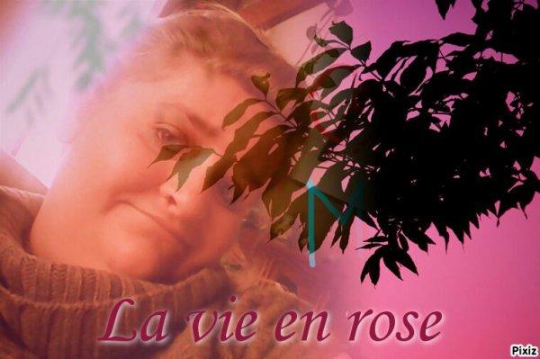 Loing d'etre rose