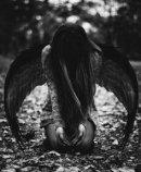 Photo de Psychose-Destructrice